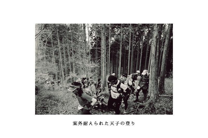 03_nobori